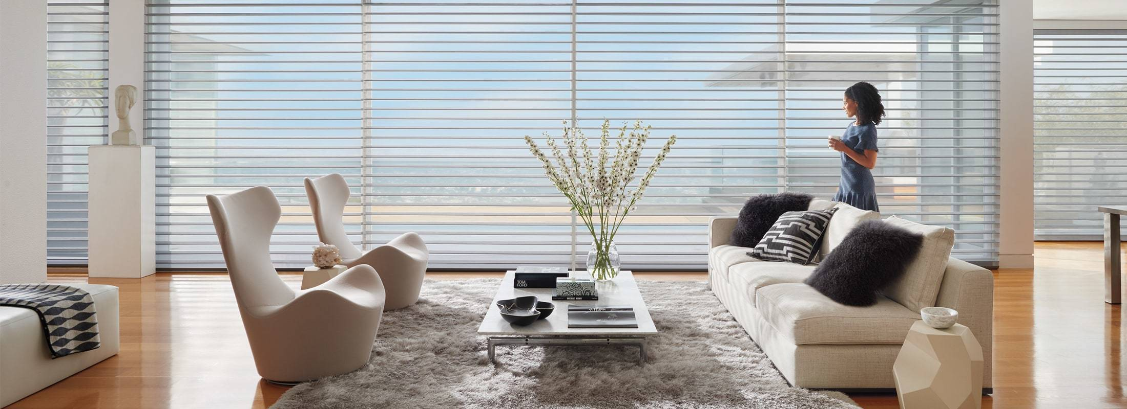 Silhouette® Window Shadings feature soft adjustable fabric vanes that appear to be floating between two sheer fabric panels that beautifully diffuse harsh sunlight. Simply tilt the vanes to achieve your desired level of light and privacy. Learn more about Silhouette® Window Shadings.